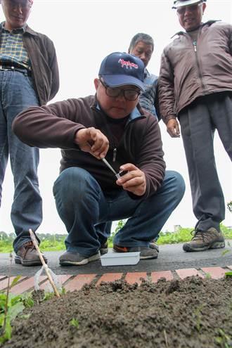 宜蘭再現2紅火蟻丘 繼續灌藥監測