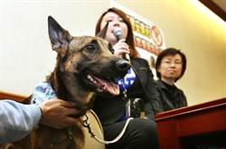 動保團體籲 速刪社區禁養寵物惡法