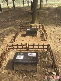 陸流行寵物殯葬  火化、樹葬都行