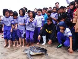 海龜「魚槍俠」 背甲被射穿神奇復原