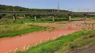 鳳山溪被染紅 砂石廠勒令停工