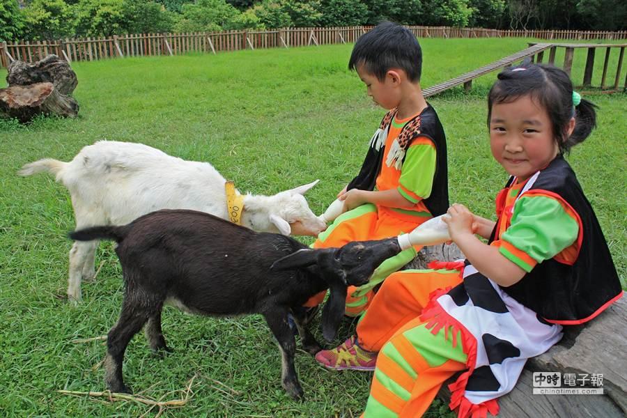 冬山鄉立幼兒園小朋友,來到綠博快樂牧場園區,體驗餵小羊喝奶,感受母親哺育小孩的辛勞。(王亭云攝)
