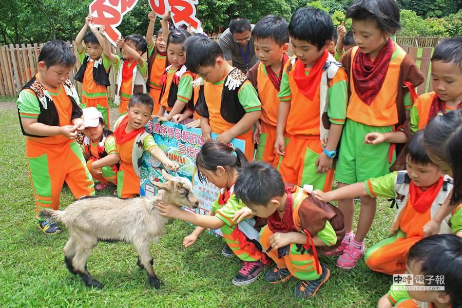 小朋友們搶著摸小羊,直呼「好可愛!」(王亭云攝)