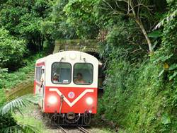 森林鐵路FUN暑假 郵輪列車6月3日開賣