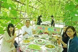 有機饗宴 瓜棚下吃在地原味