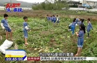 開心農場種蘿蔔 耕耘學人生哲理
