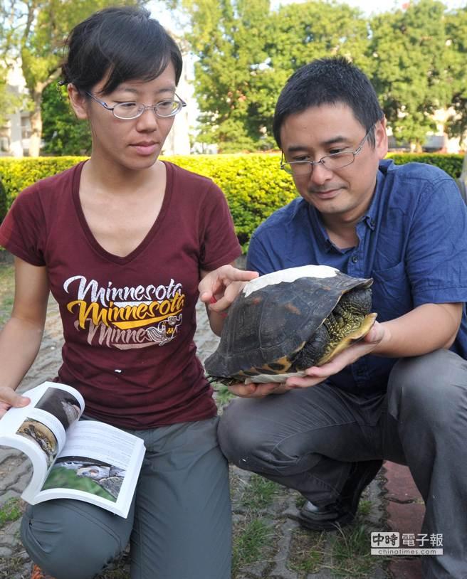 歐陽夢澍(右)、王齡敏(右)在協會成立當天,順利完成第1筆斑龜救傷紀錄。(李金生攝)