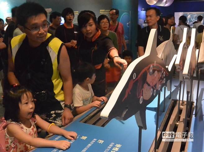 屏東海生館推出「鯊魚特展」,小朋友好奇觀看鯊魚的身體構造。(潘建志攝)