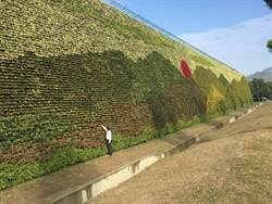 世界最大垂直花園! 綠化牆破金氏世界紀錄