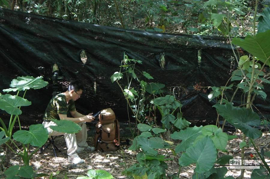 林內鄉龍過脈步道圍起20、30公尺黑網,拍鳥人士在網外靜靜守候,俗稱大砲的長鏡頭可以探入,但人不能靠近。(周麗蘭攝)