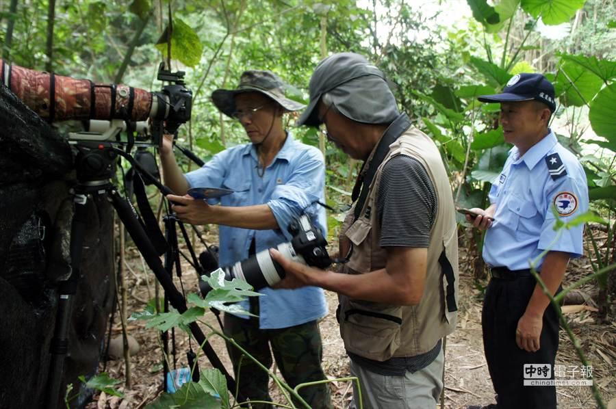 林內鄉龍過脈步道的八色鳥巢,雲林野鳥學會雇請保全(右一)24小時看守,專程來拍八色鳥的日本人(中)向高雄的黃順益(左)商請拷貝照片,雖語言不通但皆大歡喜。(周麗蘭攝)