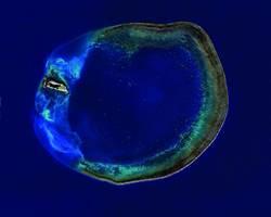 聖嬰來襲?海管處海洋保育講座解析
