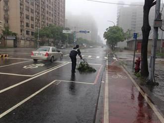 昌鴻颱風挾強風 警協助清路樹、移機車