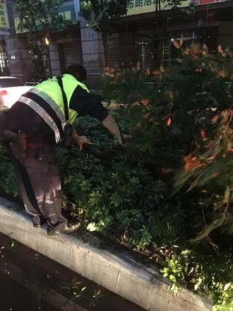 颱風尾掃路樹倒 警徒手及時救援