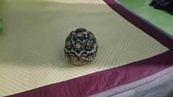 婦人慣竊上回偷蜥蝪 近日又連竊烏龜、鸚鵡