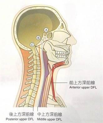 顳顎關節疼痛 需對症下藥