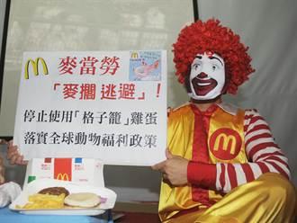 麥當勞用「格子籠」雞蛋 涉廣告不實