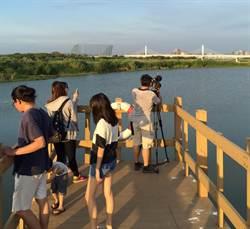 人工溼地公園 竹市擬打造成旅遊新亮點