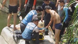 14歲少年落水 20歲青年救人反溺斃