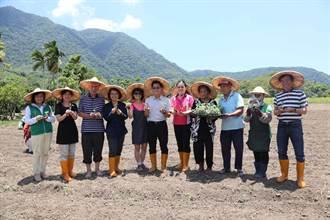 鼓勵年輕人返鄉 張榮發基金會捐贈農機具