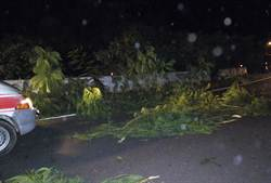 屏東滿州2名消防員移樹遭酒駕車撞 1死1重傷