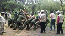 路樹倒塌 軍方協助恢復環境