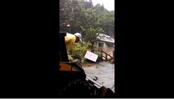 遭颱風肆虐 三峽鱘龍魚養殖場損失上千萬