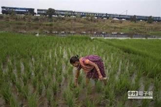 驚駭 印度2.5萬農民求總統批准自殺