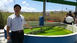 廢氣變黃金 微藻成減碳小尖兵