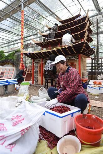 農業電商平臺成農博會「新寵」
