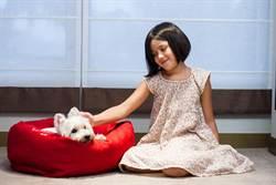 寵愛毛小孩 台北君悅推友善愛犬住房