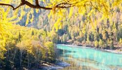 東方瑞士「喀納斯湖」 秋季風景美得令人屏息