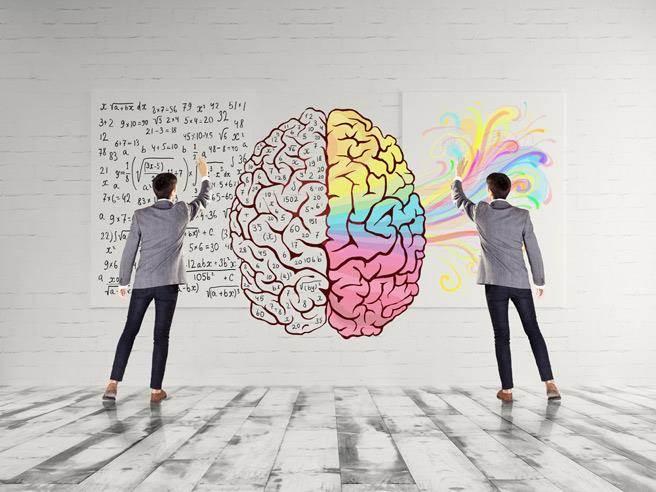 人類整體的情感及高度的機能在大腦裡,可分為左腦及右腦。左、右腦各自掌管不同的功能,對我們的個性、行為及學習亦會造成不同的影響。 圖片來源:健康365