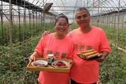 雲林小農情人夢 為愛妻種蕃茄、研發蕃茄蛋捲