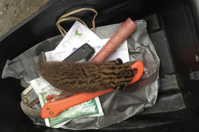 農友發現已落單挨餓多時的幼小石虎,在特生中心人員抵達前,暫放機車置物箱內確保安全。(農委會特生中心提供)