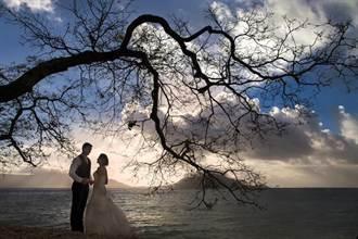 怎麼拍都美! 澳洲大堡礁成熱門婚禮勝地