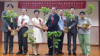 樹王生技成立林場 廣種20萬棵牛樟樹