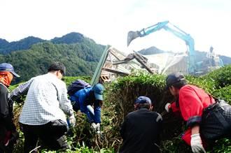 文化景觀審議期間 高海拔松露茶園遭砍除