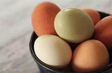 一天只能吃一個雞蛋?難道錯了嗎?