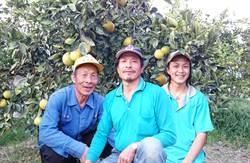 中華郵政挺小農 推「東河臍橙」