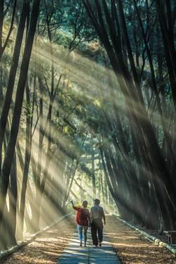 南投全國攝影賽 〈迎朝陽〉奪冠
