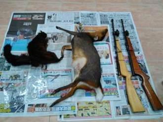 原住民打山羌、大赤鼯鼠 向山產兜售遭查獲