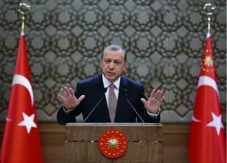 土耳其總統:早知是俄機就...