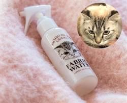 貓奴有福囉! 貓額頭香水 隨時帶著聞