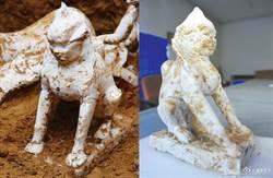 寧夏唐墓發現罕見獅身人面像