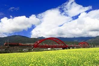 一路向南賞花趣 農曆過年前後 季節限定的美景