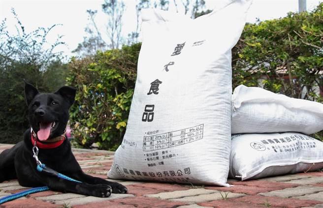 台中市府動保處分送犬貓飼料給動保人士和團體,讓犬貓不必擔心斷炊之虞。(圖:台中市府提供)