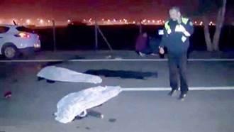 土耳其年輕人躺馬路玩自拍 2人被輾斃