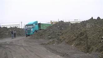八分地良田被糟蹋  回填一米五深的淤泥混爐渣