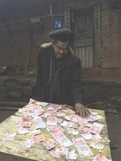 萬元現鈔被鼠偷 貓狗找到已成碎錢